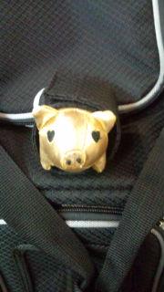 豚さんのお部屋